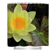 Perfect Flower Shower Curtain