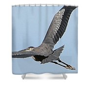 Perfect Form Shower Curtain