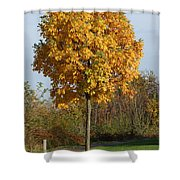 Perfect Little Tree Shower Curtain