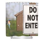 Perfect Nesting Box 2 Shower Curtain