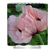 Perfect Peach Poppy Shower Curtain