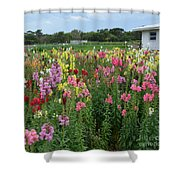Perfect Picture Shower Curtain