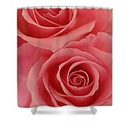Perfect Pink Roses Shower Curtain