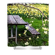 Perfect Place To Picnic Shower Curtain