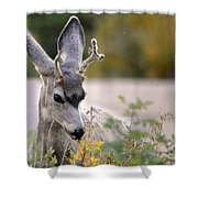 Perfect Pose Shower Curtain