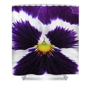 Perfectly Pansy 02 Shower Curtain