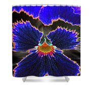 Perfectly Pansy 02 - Photopower Shower Curtain