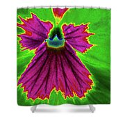 Perfectly Pansy 04 - Photopower Shower Curtain