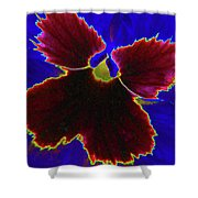 Perfectly Pansy 05 - Photopower Shower Curtain