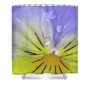 Perfectly Pansy 16 Shower Curtain