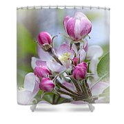 Perfectly Pink Shower Curtain