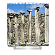 Pergamon Asklepion Colonnade Shower Curtain