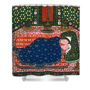Persia: Lovers, 1527-28 Shower Curtain