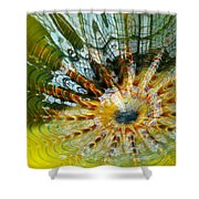 Persian Pool Lily Pad Shower Curtain