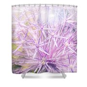 Persian Stars Shower Curtain