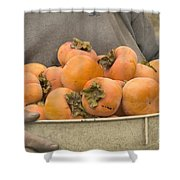 Persimmons In A Bucket Shower Curtain