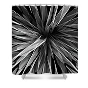 Perspective Facets Shower Curtain