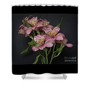 Peruvian Lily Shower Curtain
