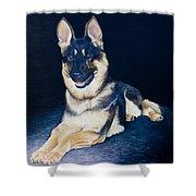 Pet Commission-shaka Shower Curtain