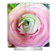 Flower, Petal Labyrinth Shower Curtain