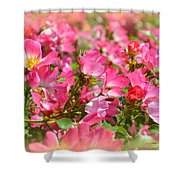 Petal Softly Shower Curtain