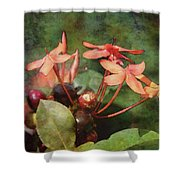 Petals And Berries 8618 Idp_2 Shower Curtain