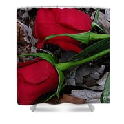Petals And Leafs Shower Curtain