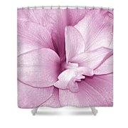 Petals In Pink Shower Curtain