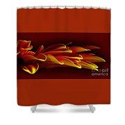 Petals Like Fingertips By Kaye Menner Shower Curtain