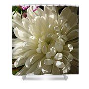 Petals Profusion Shower Curtain