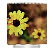 Petals Stretched Shower Curtain