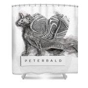 Peterbald Kitten 01 Shower Curtain