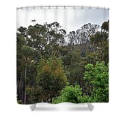 Peters Canyon In The Rain 8 Shower Curtain