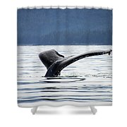 Petersburg Ak Whale Tale 5 Shower Curtain
