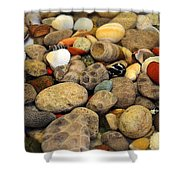 Petoskey Stones With Shells Ll Shower Curtain