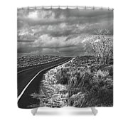 Petrified Forest 6 Shower Curtain