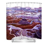 Petrified Forest Shower Curtain