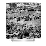 Petrified Forest National Park #2 Shower Curtain
