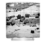 Petrified Forest National Park #3 Shower Curtain