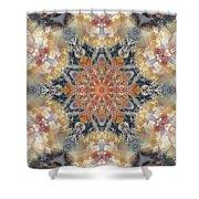 Petrified Snowflake Shower Curtain