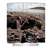 Petrified Wood #2 Shower Curtain