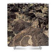 Petroglyph Shower Curtain