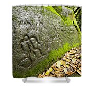 Petroglyphs At An Archaeological Site Shower Curtain
