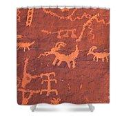 Petroglyphs Shower Curtain