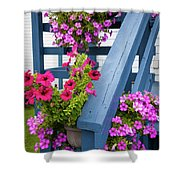 Petunias On Blue Porch Shower Curtain