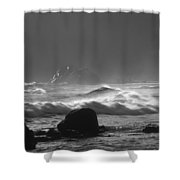 Pfeiffer Beach Sp 8245 Shower Curtain