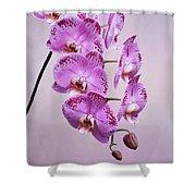 Phalaenopsis Lianher Happy Dancer Shower Curtain