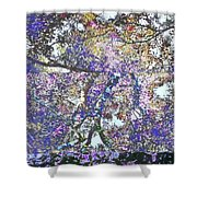 Phanquzhi Shower Curtain by Eikoni Images