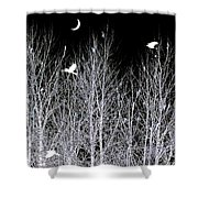 Phantom Birds Shower Curtain