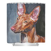 Pharaoh Hound Shower Curtain by Lee Ann Shepard